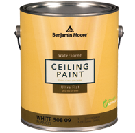 Benjamin Moore Ceiling Paint